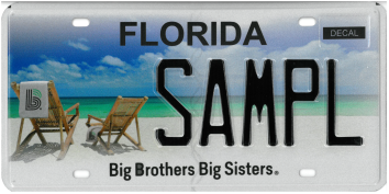 Big Brothers Big Sisters sample plate