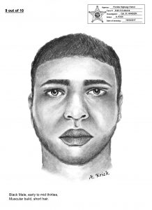 Hit and run suspect - Sketch
