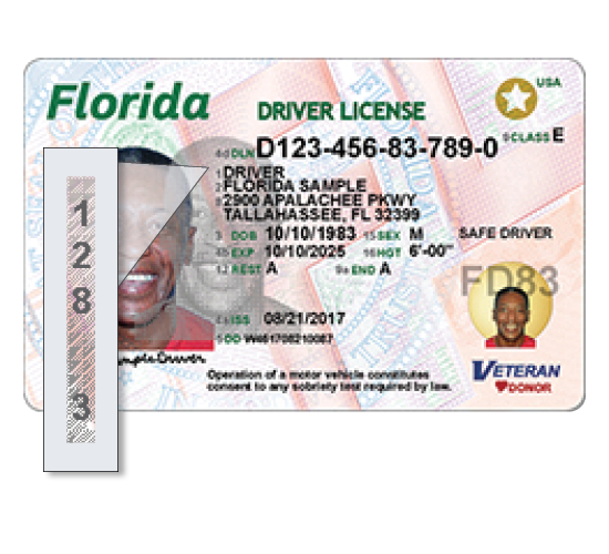 Florida 39 s new driver license and id card florida highway for Florida motor vehicle number