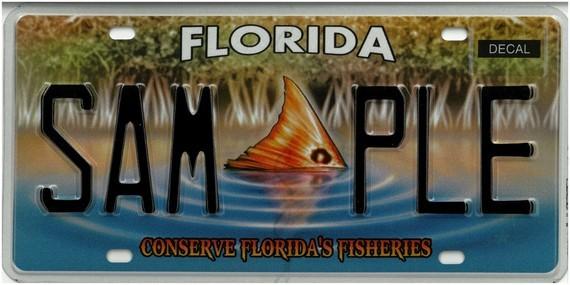 Conserve Florida's Fisheries