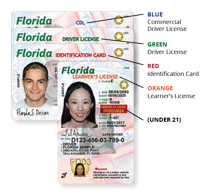 new driver license designated header colors