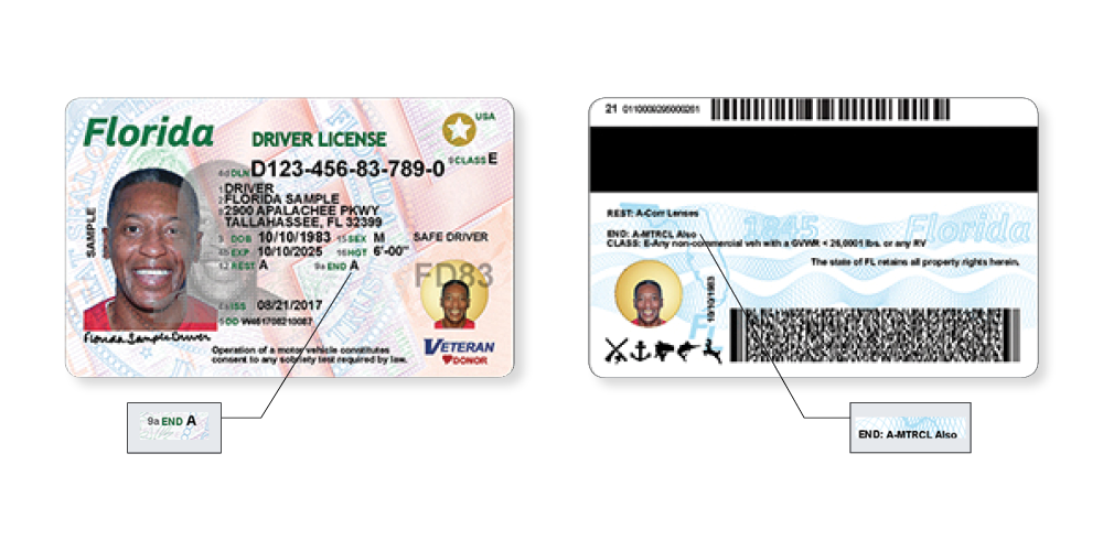 Florida Dmv Registration Renewal >> Florida's NEW Driver License and ID Card - Florida Department of Highway Safety and Motor Vehicles
