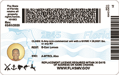 back of new drivers license starting august 2020