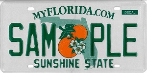 car card check florida in